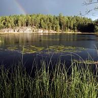 芬兰湖泊和森林