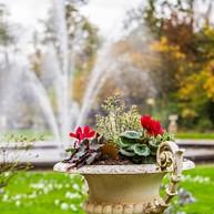 Die Flora - Botanischer Garten