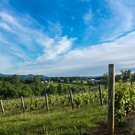 Grandfather Vineyard & Winery