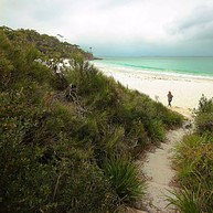 White Sands Walk and Scribbly Gum Track