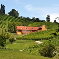Wine Valdhuber