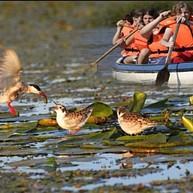 Lake Tisza Eco Centre