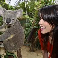 시드니 야생동물원