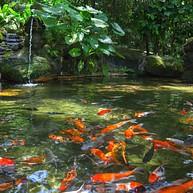 湖滨公园 (taman Tasik Perdana)