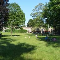 Le parc de Hallerwiese