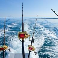 Punta Cana Fishing