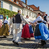 Old Vine Festival