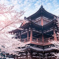 Qing Long Temple / 青龙寺