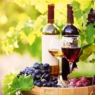 Ramona Ranch Vineyard & Winery