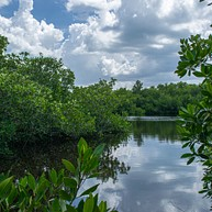 Varahicacos Ecological Reserve