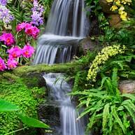 Wasserfallgarten