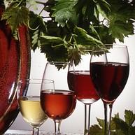 De wijn in al zijn kleuren
