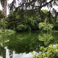 Nova Sintra Park