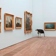 Le musée d'arts