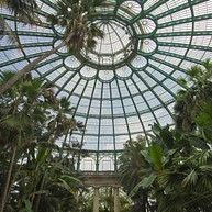 Visite des serres royales de Laeken à Bruxelles