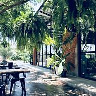 Café Botanica