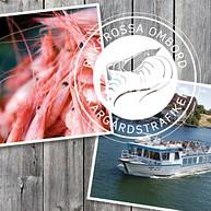 Shrimp Galore and boattour