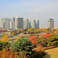 ソウルのオリンピック公園