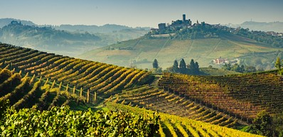 Langhe Wine Tours