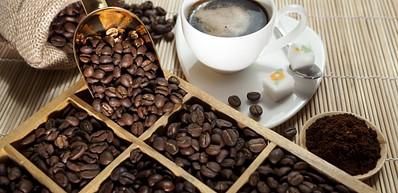 Cap Kuda Coffee Factory
