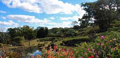 Maleny Botanic Gardens