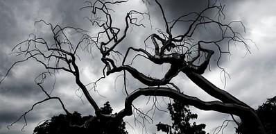 Sleepy Hollow, Scaryville