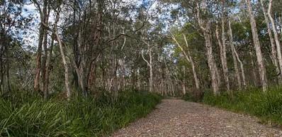 Googik Heritage Walking Track