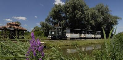 Schmalspurbahn & Fischteiche