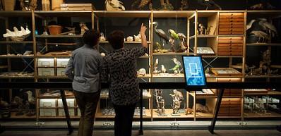Natuurmuseum Brabant - Tilburg