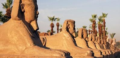 Allée des Sphinx