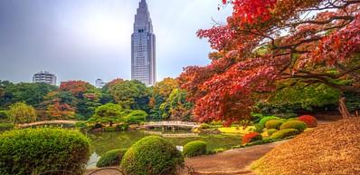Shinjuku Gyoen National Trädgård