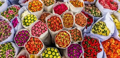 Pergola de las Flores Santa Maria