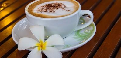Kauai Coffee Company Visitor Center