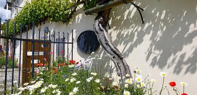 Stara Trta & The Old Vine House
