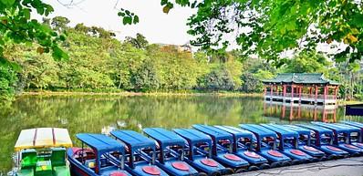 Yuexiu Park / 越秀公园