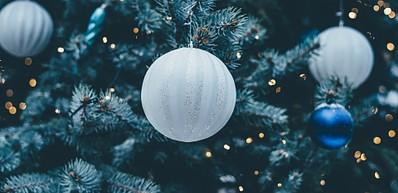Lighting of the Oslo Christmas Tree