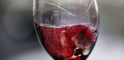 와인 투어