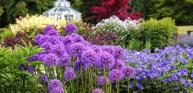 Botanischer Garten von Göteborg