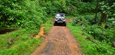 Cloud Forest Safari