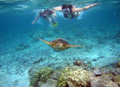 Aloha Kauai Tours - Kauai, Hawaii - Arrivalguides com