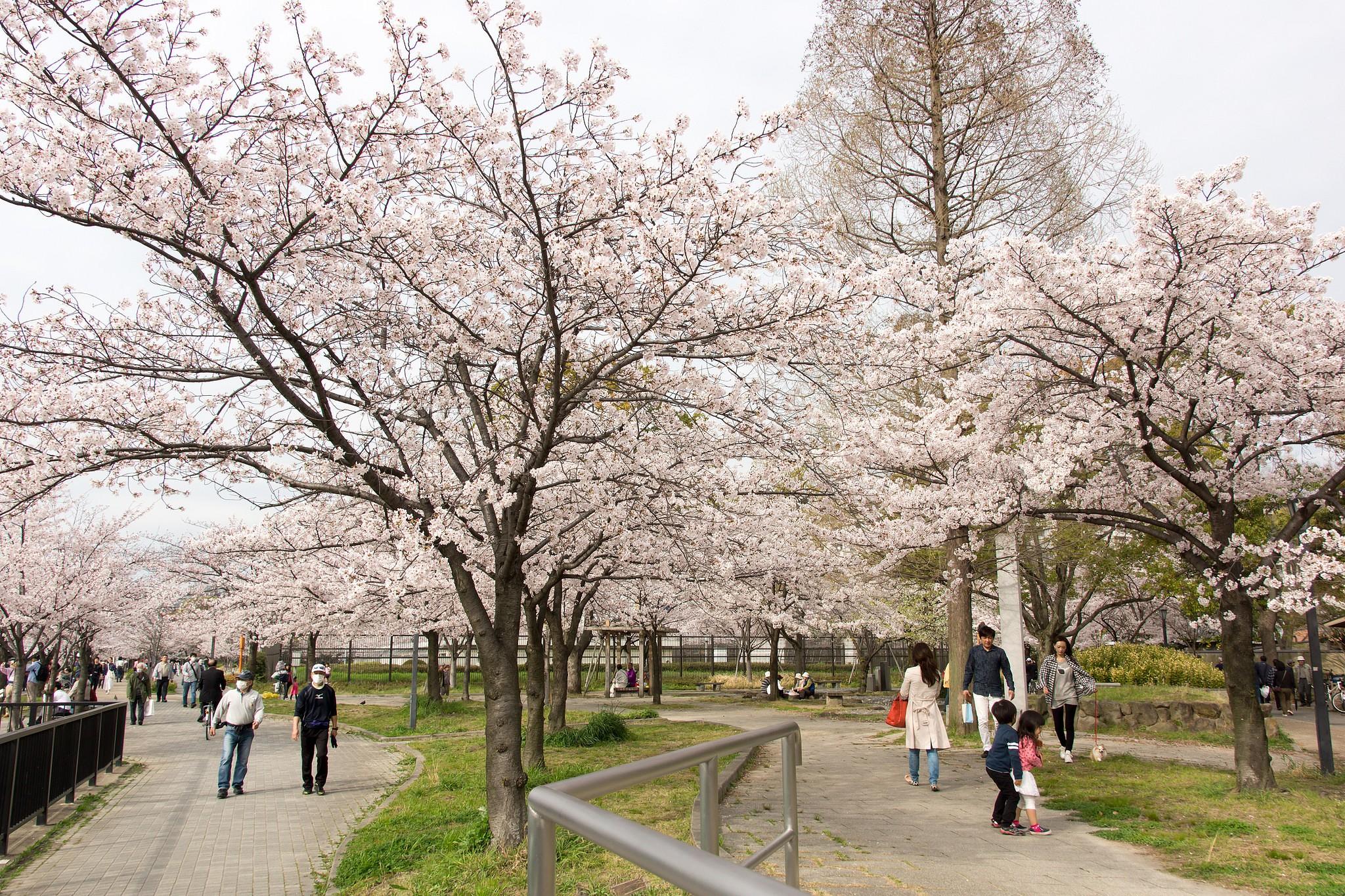 Kema Sakuranomiya Park - Osaka - Arrivalguides.com